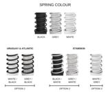 Veer kleuren Aeris Swopper - Leer Frame type l Beweegkruk l | Worktrainer.nl