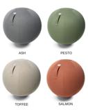 Sova zitbal vluv kleuren  | kies voor een gezonde werkplek bezoek Worktrainer.nl