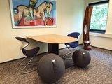 Oyo en Vluv zitbal vergadersetting   ergonomisch zitten   kies een gezonde werkplek   Worktrainer.nl
